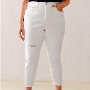 NEW Levi's Wedgie Skinny Distressed Jeans Size 20W